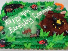 Bug Theme Birthday Cake